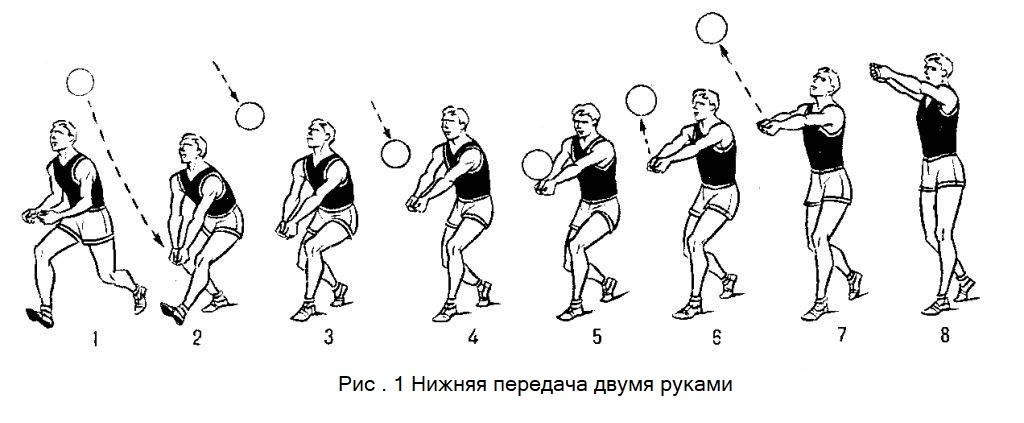 Что нужно делать на разминке перед волейбольной